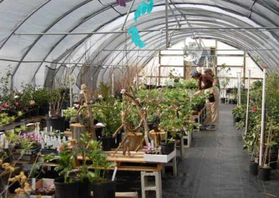 Gethsemane Gardens & Nursery
