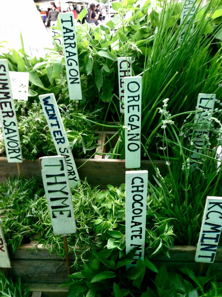 Cooking with Herbs to Lower Sodium – Cooking with the Cooperative Extension